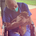 Navy Veteran, 86, Has Life Saved by Chihuahua Mix After Suffering from Stroke