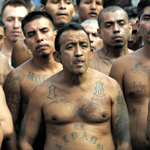 ICE Deports 256,000 Illegal Aliens, Including 6,000 Gang Members From US