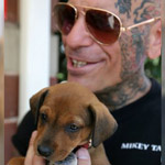 Vigilante Bikers Rescue Abused Animals, Confront Abusive Pet Owners