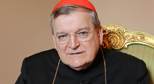 Powerful Catholic Cardinal Prepares To Take Down Pope Francis Over Open Borders