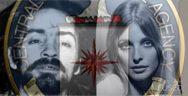 the hippie movement was seen as an economical and sociological threat to both the government and its vietnam war effort