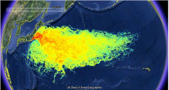 the pacific ocean is thought to have been contaminated from the leak out from the fukushima  nuclear disaster