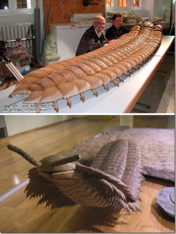 Giant insects prehistoric - photo#11