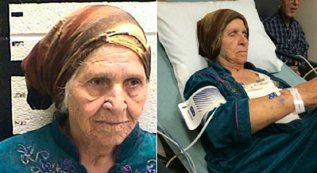 87-Year-Old Grandmother Tasered by Cops While Gardening: Police Chief Defends