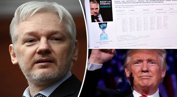 trump called on to free assange after helping him into the whitehouse