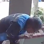 Amazon Delivery Driver Caught Spitting on Package - WATCH