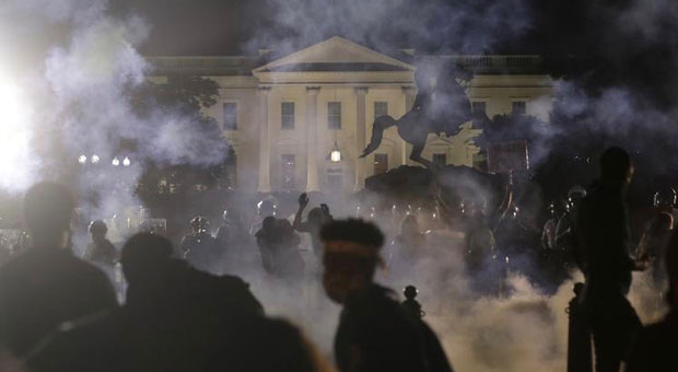 radical left  occupy  activists are plotting a  white house siege