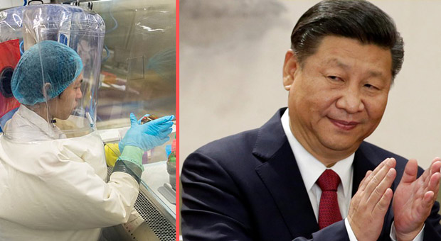 china admitted to destroying early coronavirus samples but claimed it was not part of a cover up