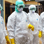 Top Harvard Professor: Ebola Is about To Go Global, Prepare Now