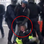 Police State: French Riot Cops Drag Yellow Vest Down Street by Her Hair