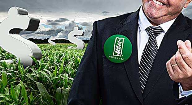repercussions of gmos Gmos—or genetically modified organisms—are created in a lab by altering the genetic makeup of a plant or an animal ninety-two percent of americans believe that gmo.