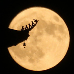 latest China To Launch Artificial Moon Into Orbit And Replace Street Lights By 2020