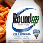 Monsanto Loses Appeal On Cancer Verdict; Now They Owe $78 Million