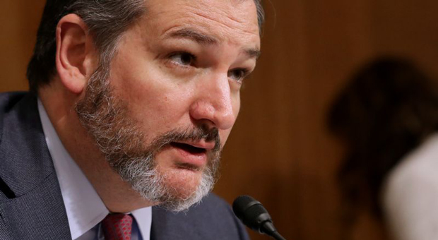 Cruz Bill: Process Migrants 'Where Democrat Elites Host Their Cocktail Parties'