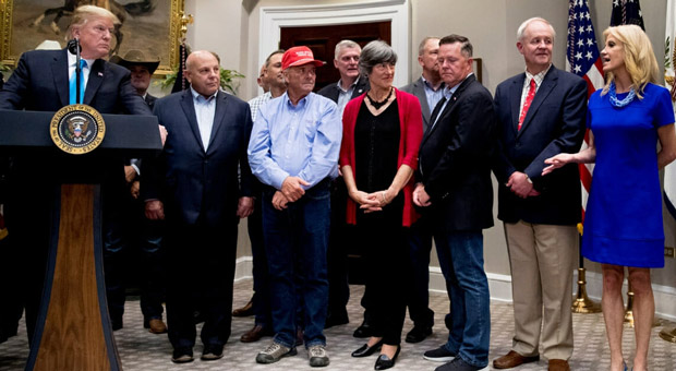 Witnesses Back Trump, Refute 'Crazy' Pelosi's 'Tempter Tantrum' Claims