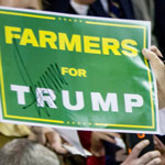 Trump Signs Memorandum To Divert More Water to Farmers in California