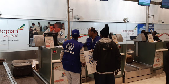 iom ethiopia is transporting the somali migrants directly into german airports