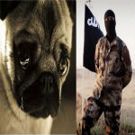ISIS Issues Calling For Mass Killing Of Dogs & Puppies In America